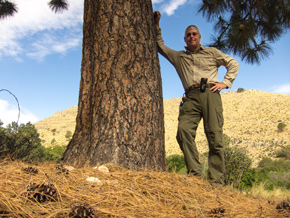 Tom in the Guadalupe Mountains next to big tree